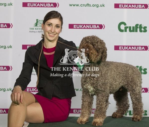 Crufts Dog Breed Categories