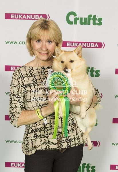 Picture shows Victoria Leaf from York with Bailey a Schipperke, which was the Best of Breed winner today (Sunday 08.03.15), the fourth day of Crufts 2015, at the NEC Birmingham