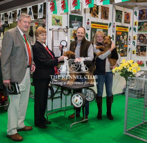 Discover Dogs Best Booth : Terrier Group awarded to Welsh Terrier Club    Judges:  Jim & Betty Peach
