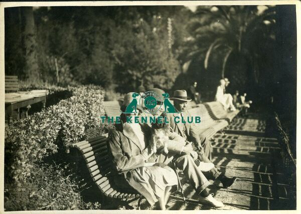 Black and white vintage photograph of unknown woman sitting on a bench with her Pekingese in Cannes   studio photographer 66, Rue Grandeur, Cannes