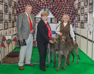 Discover Dogs Best Booth : Hound Group awarded to Deerhound Club Judges: Jim