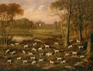 Fox Terriers at Newstead Abbey