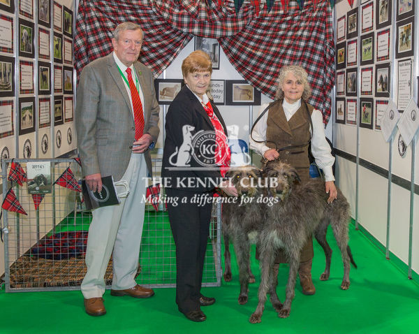 Discover Dogs Best Booth : Hound Group awarded to Deerhound Club  Judges:  Jim & Betty Peach
