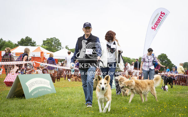 Scruffts Essex Hylands May 26, 2019