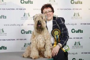 Crufts 2009 Best of Breed Winner