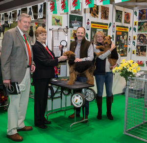 Discover Dogs Best Booth : Terrier Group awarded to Welsh Terrier Club Judges