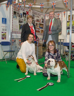 Discover Dogs Best Booth : Utility Group awarded to The Bulldog Breed