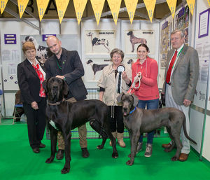 Discover Dogs Best Booth : Working Group awarded to The Great Dane Club Judges