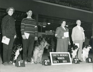 Obedience Winner at Crufts 1967