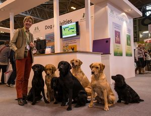 crufts 2015/philippa williams photo may used press required