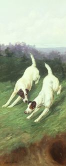 Totteridge Fox Terrier panel